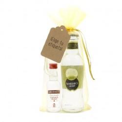 Kit vodka smirnoff y tonica nordic original para regalar