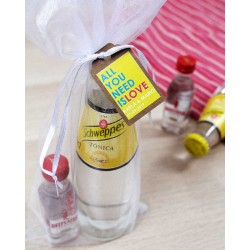 KIT GIN TONIC: Ginebra Beefeater y tónica Schweppes
